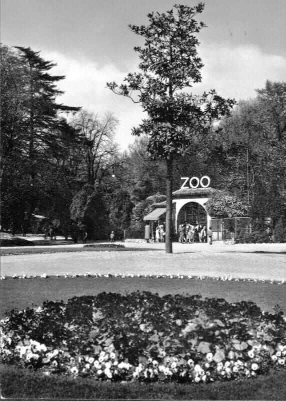 zoo milano prima della chiusura nel 1992
